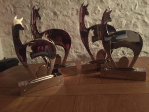 The four lovely Alpaca Showtime trophies residing at Beck Brow.